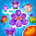 Download Blossom Blast Saga 74.0.6 APK For Android 2019