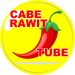Download Cabe Rawit Tube VPN 2.2 APK For Android