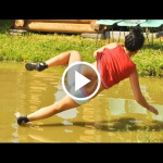 Download Funny videos for whatsapp 1.0 APK For Android