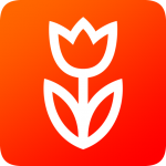 Download Flowwow flowers. Delivery of flowers and sweets 2.3.8 APK For Android