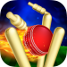 Download RunOut Master – Cricket World Cup 2019 1.56 APK For Android