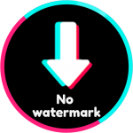 Download Video downloader for without watermark 1.33 APK For Android