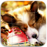 Download Dogs Tile Puzzle 1.15 APK For Android