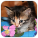 Download Tile Puzzles · Kittens 1.40.ki APK For Android
