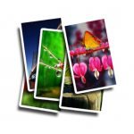 Download Free Wallpaper 1.3.1 APK For Android