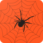 Download My Spider Quiz 1.0.2 APK For Android