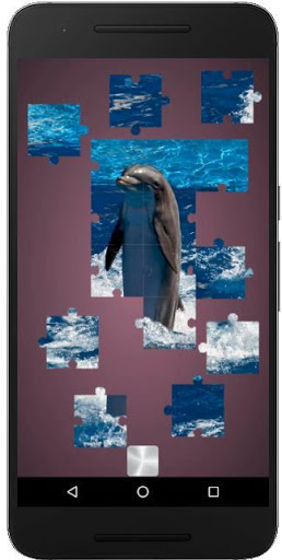Download Real Dolphins Game : Jigsaw Puzzle 2019 1.18.8 APK For Android