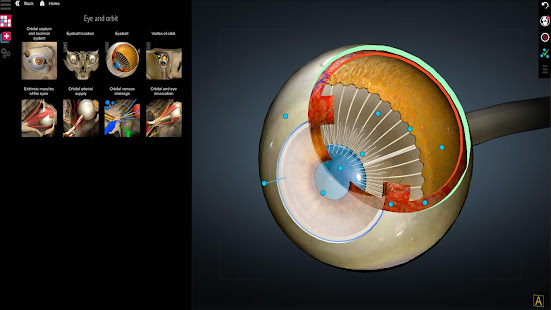 Download Anatomy Learning - 3D Anatomy Atlas 2.1.329 Apk for android
